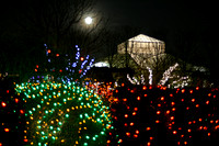 Christmas Moon at Daniel Stowe