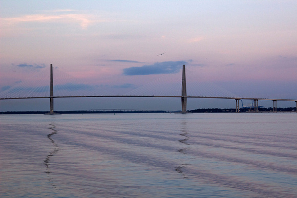 Ripples by the Ravenel Bridge