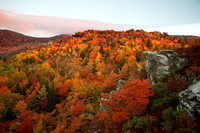 Peak Color at Rough Ridge
